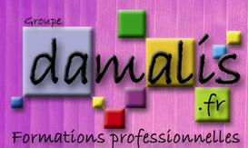 Damalis Formation